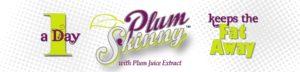 plum-skinny-banner