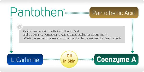 pantothenn