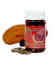 Ganoderma Spore Powder (90 ct)